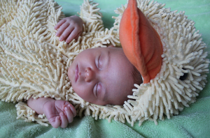 how to take great pictures of your newborn