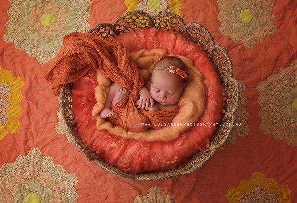 newborn photographers that inspire