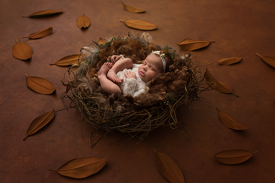 newborn sessions in mosborough